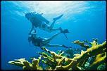 Pulsa en la imagen para verla en tamaño completo  Nombre: Breezes-scuba-diving.jpg Visitas: 2 Tamaño: 204.5 KB ID: 8486