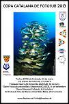 Pulsa en la imagen para verla en tamaño completo  Nombre: cartell copa catalana.jpg Visitas: 4 Tamaño: 668.8 KB ID: 10023