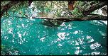 Pulsa en la imagen para verla en tamaño completo  Nombre: cenoteazul.jpg Visitas: 9 Tamaño: 72.4 KB ID: 8497