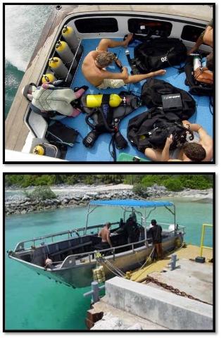 ley procedimiento marina mercante: